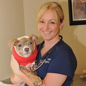Dr. Loudon - Veterinary Telehealth, Veterinary House Calls, In-Home Euthanasia, Vet-to-Vet Services